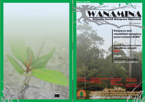 Wanamina2013e1