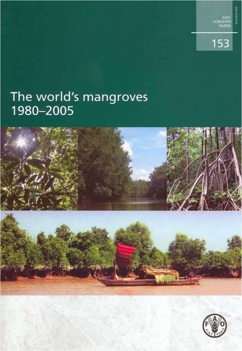 mangrove dunia 2005