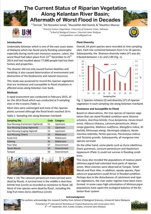 Kelantan riparian vegetation-A4