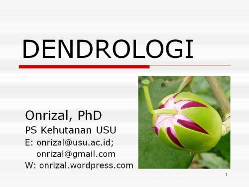 Dendrologi